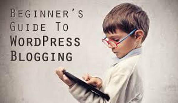wordpress-begineers-guide